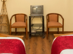 Superior View Room